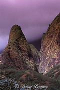 Io Valley<br /> Maui, Hawaii, USA ( Pacific )