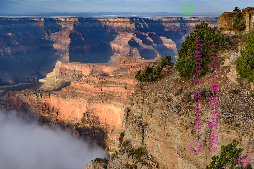 Early sunlight lights up cliffs below Point Sublime with lingering fog in the early morning, Grand Canyon, © David A. Ponton