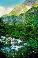 Milford Track, south island, New Zealand