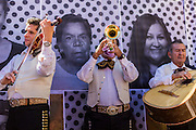 05 OCTOBER 2013 - PHOENIX, ARIZONA:     Mariachi musicians perform in front of photo of immigrants during an immigration rally in Phoenix. More than 1,000 people marched through downtown Phoenix Saturday to demonstrate for the DREAM Act and immigration reform. It was a part of the National Day of Dignity and Respect organized by the Action Network.    PHOTO BY JACK KURTZ