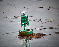 Route Marker 9 in Wrangell Narrows. Image taken with a Nikon D300 camera and 70-300 mm VR lens.