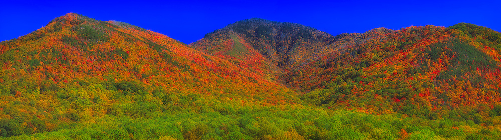Panoramic view of mountains and valley with brilliant fall foliage under a deep blue sky.  Great Smoky Mountains National Park, Tennessee.