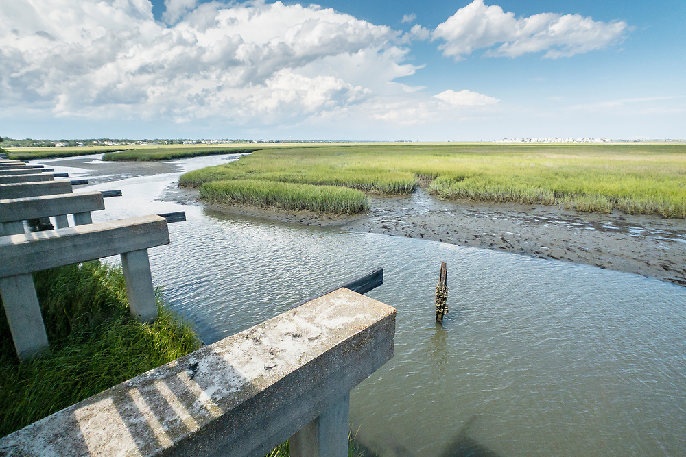 The original concrete supports of the Pitt Street Bridge, a local park on a former highway bridge, in Mount Pleasant, South Carolina on Wednesday, June 24, 2020. Copyright 2020 Jason Barnette