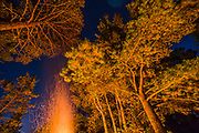 Campfire, September, Hubbard County, Minnesota, USA