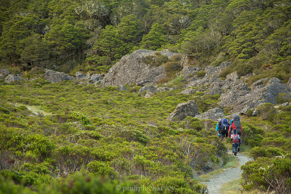 Distant view of a group of people hiking along the Routeburn Track, South Island, New Zealand
