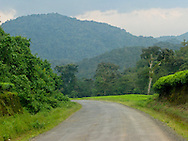 Rwanda- A narrow but paved road leads to the west entry into the Nyungwe National Forest in southern Rwanda.