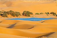 Maroc. Grand Sud. Laayoune. Desert et lagune dans les environs de la ville. Ancien Sahara espagnol. // Morocco. South Morocco. Laayoune. Desert an laguna around the city. Former Spanish Sahara.
