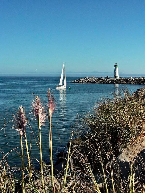 Santa Cruz Harbor ~ Walton Lighthouse ~ 0448