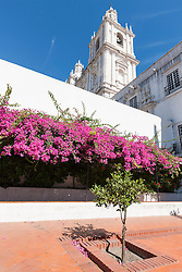 "Low angle view of Monastery of S""o Vicente de Fora, Lisbon, Portugal"