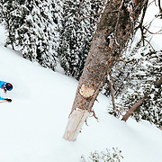 Jess McMillan skis blower powder during a low snowfall winter in the Tetons.