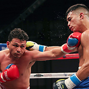 KISSIMMEE, FL - MARCH 05: Gianny Garcia gets punched by Julio Buitrago during the Boxeo Telemundo All Star Boxing event at Osceola Heritage Park on March 5, 2021 in Kissimmee, Florida. (Photo by Alex Menendez/Getty Images) *** Local Caption *** Gianny Garcia; Julio Buitrago