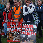 Parliment Square, 17 October 2021, London, Scalett the rescue dog from Hungary laboratory, Peter Egan and Dr Ian Mcgill join UK. British dog lovers desperately continued to protest the release of the MBR Beagle. The cruel behavior of raising experimental puppies in Kent, England.