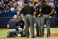 September 20, 2017 - St. Petersburg, Florida, U.S. - WILL VRAGOVIC   |   Times.Umpire Manny Gonzalez (79) checked on by a Tampa Bay Rays trainer after getting hit in the throat by a ball in the eighth inning of the game between the Chicago Cubs and the Tampa Bay Rays at Tropicana Field in St. Petersburg, Fla. on Wednesday, Sept. 20, 2017. (Credit Image: © Will Vragovic/Tampa Bay Times via ZUMA Wire)