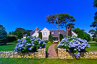 Home with hydrangea along Shore Road, Chatham, Cape Cod, Massachusetts, USA