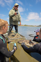 Sean Photo Identifying Leopard Shark