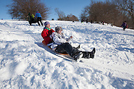 Brookline, MA 02/10/2013<br /> Saoirse Connolly and Sophia Vitello sled at Larz Anderson Park on Sunday afternoon.
