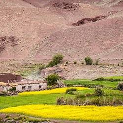 Farm and home in the Markha Valley in Ladakh.