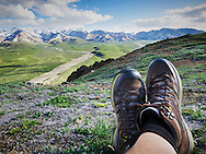 A hiker sits on the ground overlooking a mountain range in Denali National Park, Alaska.