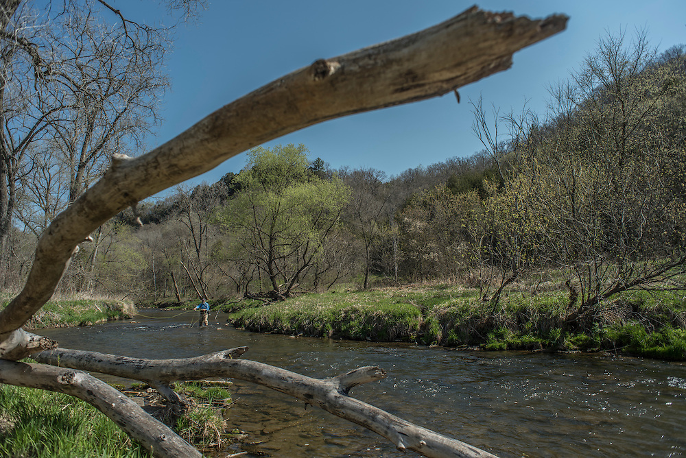 Fly fishing the West Fork of the Kickapoo River near Viroqua in Wisconsin's Driftless Region.