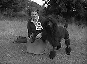 """04/08/1952 <br /> 08/04/1952<br /> 04 August 1952  <br /> Dog Show, 18th Annual Green Stan Championship at Monkstown, Co. Dublin. Miss Joanna Hayes , Abbeyville House, Goom, Co. Limerick with her Best of Breed winning poodle """"Vulcan Champagne Blast""""."""
