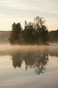 little island with trees in morning fog on the water