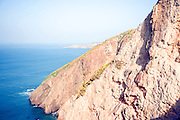 Gorse bushes growing on steep cliffs, Island of Sark, Channel Islands, Great Britain