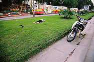 Man sleeping on the grass between the two ways of Nghi Tam street. Hanoi, Vietnam, Asia