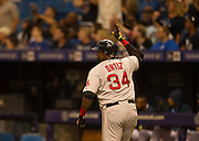MLB: SEP 12 Red Sox at Rays. David Ortiz of the Red Sox, Hits his 500th Home Run in the 5th Inning and celebrates.
