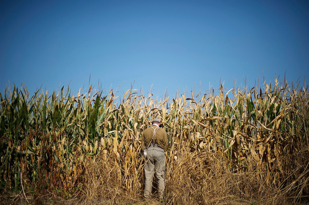 In a break during General A.P. Hill's 18 mile march from Harper's Ferry, WV to Sharpsburg, MD, a Confederate soldier from the 14th Tennessee infantry relieves himself in a cornfield, during the 150th Antietam Civil War Reenactment on September 7, 2012.