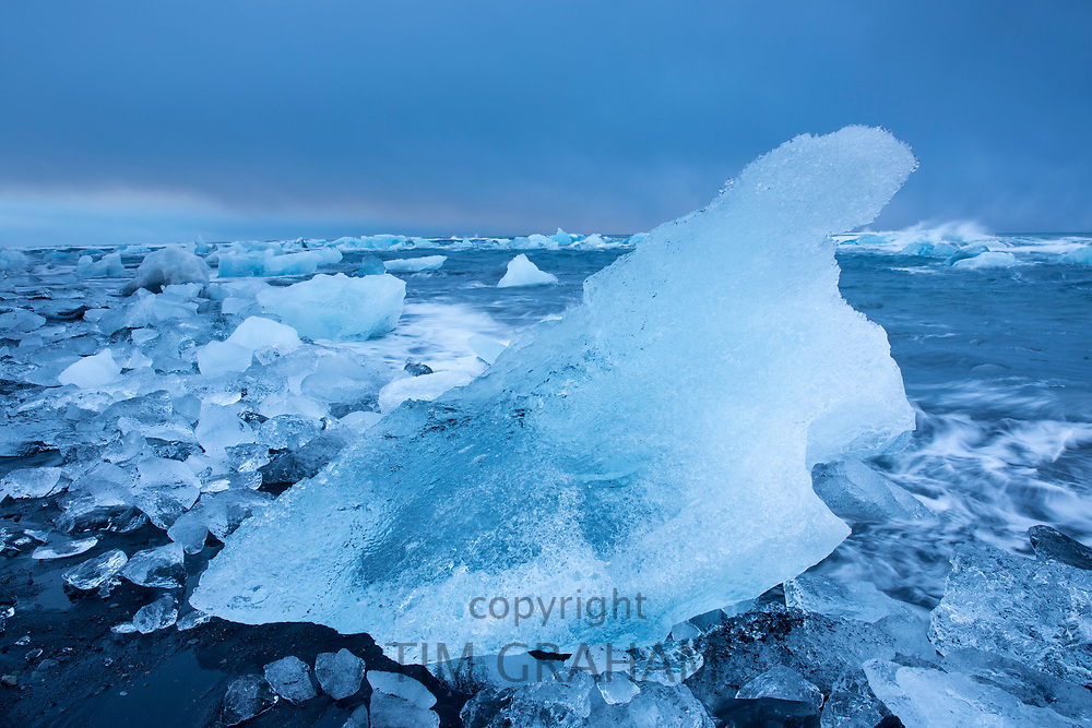 Jokulsarlon glacial lagoon by Vatnajokull National Park. Icebergs floating in blue melt water to the Atlantic Ocean from Breioamerkurjokull Glacier, part of Vatnajokull Glacier in Iceland