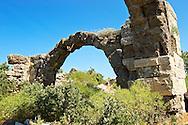 Ancient Roman bath and gymnasium complex of Alexandria Troas archaeological site, Canakkale, Turkey