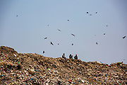 Three men sit at the top of Okhla landfill while birds fly around the dumping ground in Okhla, Delhi, India, Asia. The site was decommissioned in 2018 after reaching three times the permissible limit.  (photo by Andrew Aitchison / In pictures via Getty Images)