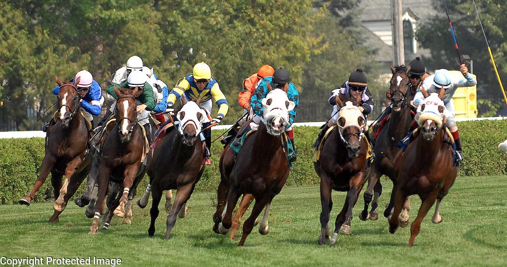 Racing at Saratoga Race Track