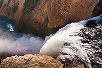 The Brink of the Lower Falls on the Yellowstone River.  Yellowstone National Park, Wyoming, USA.