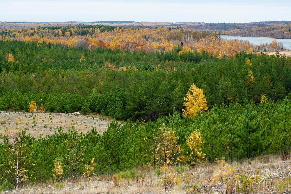 Re-greening mining waste sites at Glencore, Greater Sudbury- Falconbridge, Ontario, Canada