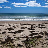 North America, Canada, Nova Scotia. Martinique Beach on the Eastern Shore.
