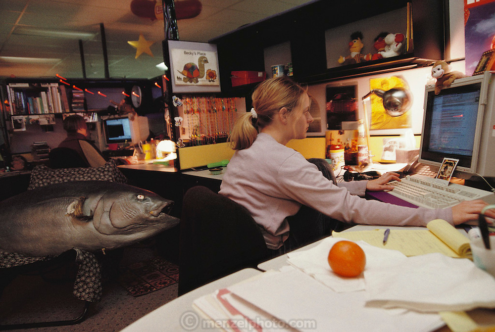 Silicon Valley, California; Yahoo! Offices in Santa Clara. (1999).