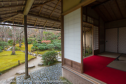 Sightseeing, Kyoto, Japan. December 10, 2015.  Photography ©2015 Michael Lichter.