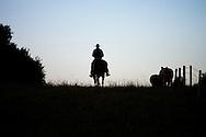 Photo Randy Vanderveen.Near Debolt, Alberta, July 22/08.A silhouetted cowboy makes his way down a pasture on horseback.