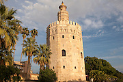 Torre del Orre built 1220 by the Almohads, moorish tower where gold was stored, Seville, Spain