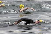 Swimmers during the 2018 Hague Endurance Festival Sprint Triathlon