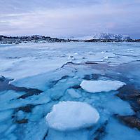 Partially frozen coastline at dawn, Lofoten Islands, Norway