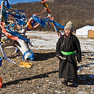 Mongolia. family of Tsatans -raindeer tribe - people building a traditional tent , ancestor of the american indian tipi . .  during the Ice festival on the frozen Khuvsgul lake. - siberia border - for the mongol new year ,  tsagaan sar, in the cold winter   Khuvsgul province