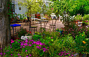 Lovely Garden, personal floral garden, sitting garden, garden work, Moreen, California plants