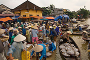 Vendors collecting fish to sell at Central Market, Hoi An, Cental Vietnam