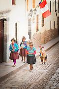 Locals leading livestock through the street in Cusco, Peru, South America