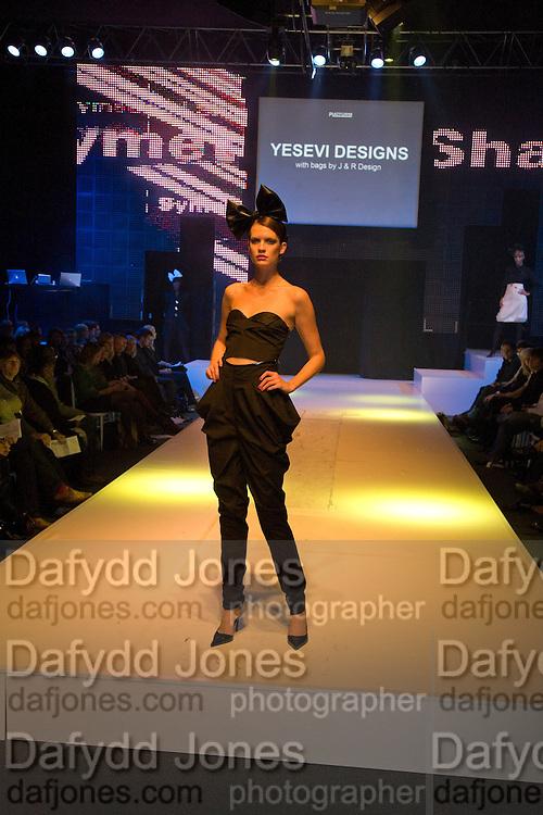 FASHION SHOW, FashionExpo, fashion show and Awards. Business Design Centre, Upper st. London. 19 November 2008.  *** Local Caption *** -DO NOT ARCHIVE -Copyright Photograph by Dafydd Jones. 248 Clapham Rd. London SW9 0PZ. Tel 0207 820 0771. www.dafjones.com