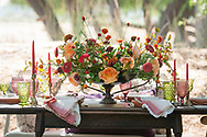Planning and florals by Paradise Parkway event planning and rentals provided by Blossom Farm Vintage Rentals