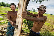 06 JUNE 2014 - IRRAWADDY DELTA,  AYEYARWADY REGION, MYANMAR: Men cut up bamboo to use in a home in their village in the Irrawaddy Delta (or Ayeyarwady Delta) in Myanmar. The region is Myanmar's largest rice producer, so its infrastructure of road transportation has been greatly developed during the 1990s and 2000s. Two thirds of the total arable land is under rice cultivation with a yield of about 2,000-2,500 kg per hectare. FIshing and aquaculture are also important economically. Because of the number of rivers and canals that crisscross the Delta, steamship service is widely available.   PHOTO BY JACK KURTZ