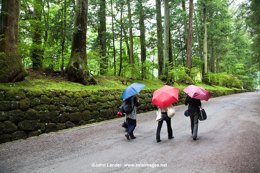 Small group of Japanese visitors with umbrellas at Nishi Sando path to  Toshogu Shrine.